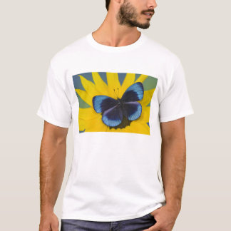 Sammamish Washington Photograph of Butterfly 44 T-Shirt