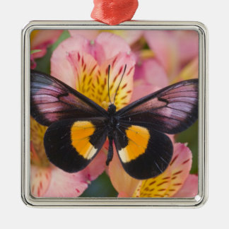 Sammamish Washington Photograph of Butterfly 45 Christmas Ornament