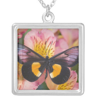 Sammamish Washington Photograph of Butterfly 45 Silver Plated Necklace