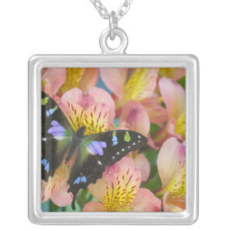 Sammamish Washington Photograph of Butterfly 47 Silver Plated Necklace