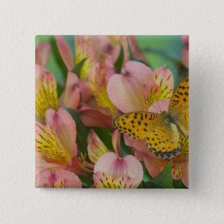 Sammamish Washington Photograph of Butterfly 48 15 Cm Square Badge
