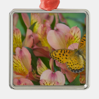 Sammamish Washington Photograph of Butterfly 48 Christmas Ornament