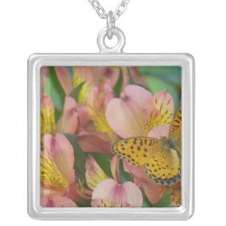Sammamish Washington Photograph of Butterfly 48 Silver Plated Necklace
