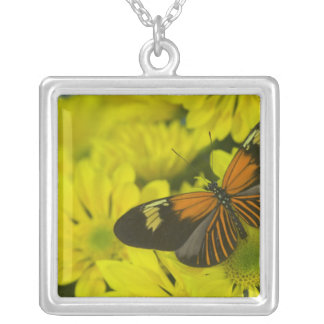 Sammamish Washington Photograph of Butterfly 49 Silver Plated Necklace
