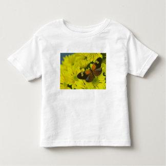 Sammamish Washington Photograph of Butterfly 49 Toddler T-Shirt