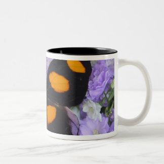 Sammamish Washington Photograph of Butterfly 4 Two-Tone Coffee Mug