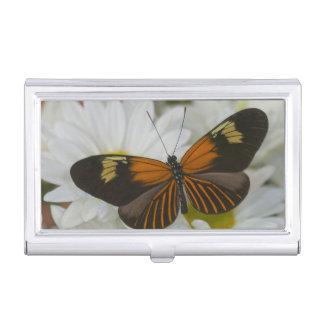 Sammamish Washington Photograph of Butterfly 50 Business Card Holder