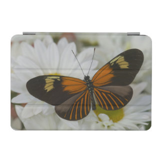 Sammamish Washington Photograph of Butterfly 50 iPad Mini Cover
