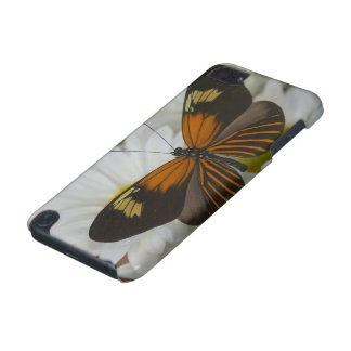 Sammamish Washington Photograph of Butterfly 50 iPod Touch (5th Generation) Case