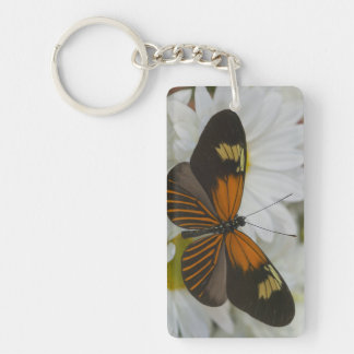 Sammamish Washington Photograph of Butterfly 50 Key Ring