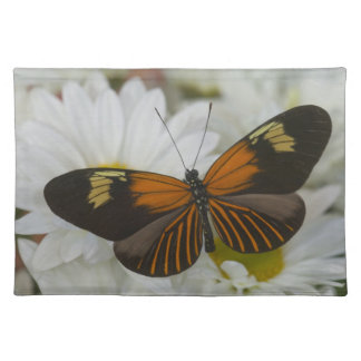 Sammamish Washington Photograph of Butterfly 50 Placemat