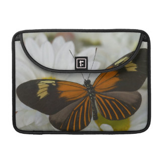 Sammamish Washington Photograph of Butterfly 50 Sleeve For MacBooks