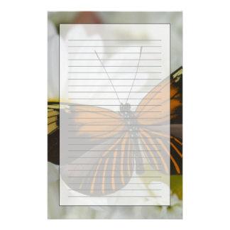 Sammamish Washington Photograph of Butterfly 50 Stationery