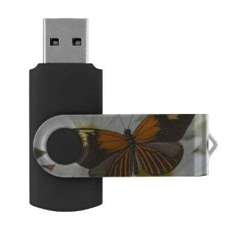 Sammamish Washington Photograph of Butterfly 50 Swivel USB 2.0 Flash Drive