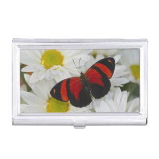 Sammamish Washington Photograph of Butterfly 51 Business Card Holder