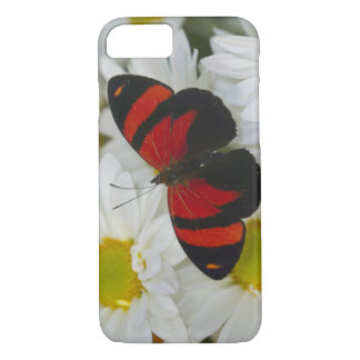 Sammamish Washington Photograph of Butterfly 51 iPhone 8/7 Case