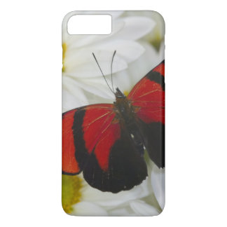 Sammamish Washington Photograph of Butterfly 51 iPhone 8 Plus/7 Plus Case