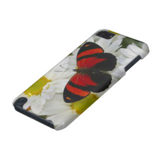 Sammamish Washington Photograph of Butterfly 51 iPod Touch (5th Generation) Cases