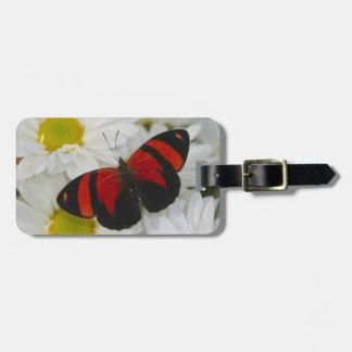 Sammamish Washington Photograph of Butterfly 51 Luggage Tag