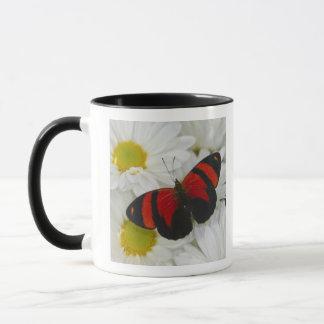 Sammamish Washington Photograph of Butterfly 51 Mug