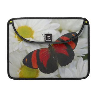 Sammamish Washington Photograph of Butterfly 51 Sleeve For MacBook Pro