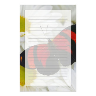Sammamish Washington Photograph of Butterfly 51 Stationery