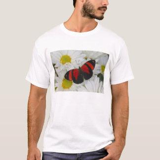 Sammamish Washington Photograph of Butterfly 51 T-Shirt