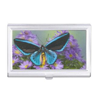 Sammamish Washington Photograph of Butterfly 52 Business Card Holder