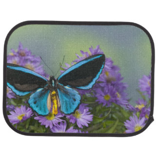 Sammamish Washington Photograph of Butterfly 52 Car Mat