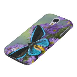 Sammamish Washington Photograph of Butterfly 52 Galaxy S4 Case