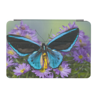 Sammamish Washington Photograph of Butterfly 52 iPad Mini Cover