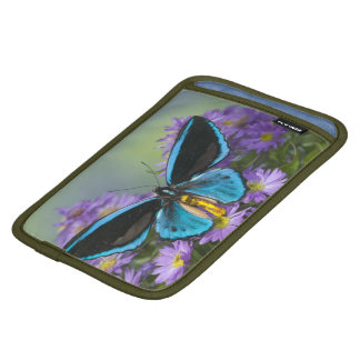 Sammamish Washington Photograph of Butterfly 52 iPad Mini Sleeve