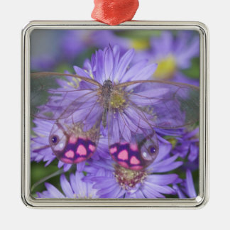 Sammamish Washington Photograph of Butterfly 53 Christmas Ornament