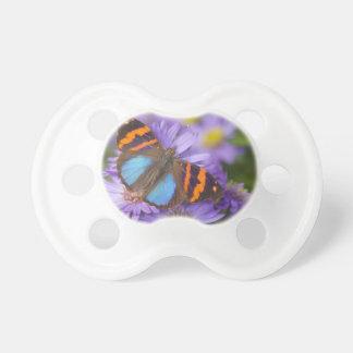 Sammamish Washington Photograph of Butterfly 54 Dummy