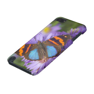 Sammamish Washington Photograph of Butterfly 54 iPod Touch (5th Generation) Case