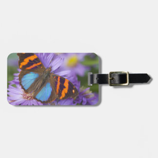 Sammamish Washington Photograph of Butterfly 54 Luggage Tag