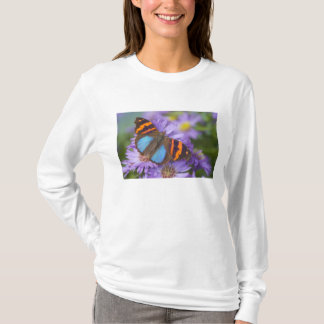 Sammamish Washington Photograph of Butterfly 54 T-Shirt