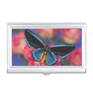 Sammamish Washington Photograph of Butterfly 55 Business Card Holder