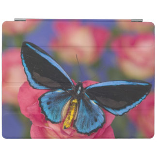 Sammamish Washington Photograph of Butterfly 55 iPad Cover