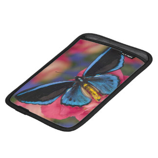 Sammamish Washington Photograph of Butterfly 55 iPad Mini Sleeve