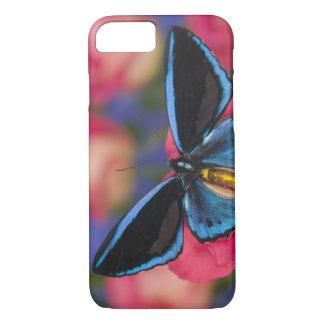 Sammamish Washington Photograph of Butterfly 55 iPhone 8/7 Case