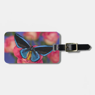 Sammamish Washington Photograph of Butterfly 55 Luggage Tag