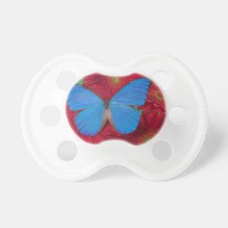 Sammamish Washington Photograph of Butterfly 56 Dummy