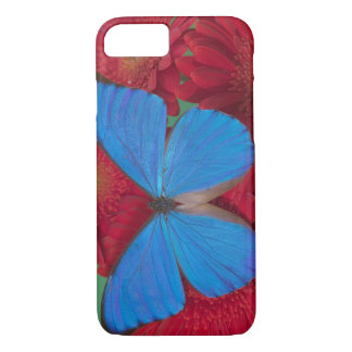Sammamish Washington Photograph of Butterfly 56 iPhone 8/7 Case