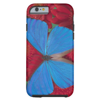 Sammamish Washington Photograph of Butterfly 56 Tough iPhone 6 Case
