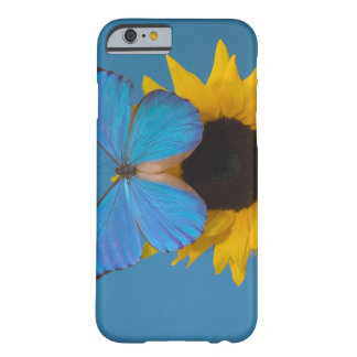 Sammamish Washington Photograph of Butterfly 57 Barely There iPhone 6 Case