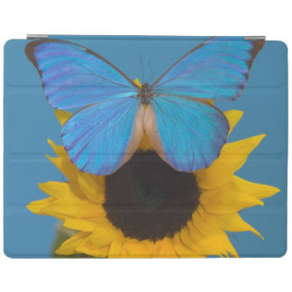 Sammamish Washington Photograph of Butterfly 57 iPad Cover