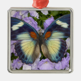 Sammamish Washington Photograph of Butterfly 5 Christmas Ornament