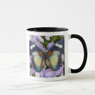 Sammamish Washington Photograph of Butterfly 5 Mug