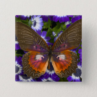 Sammamish Washington Photograph of Butterfly 8 15 Cm Square Badge